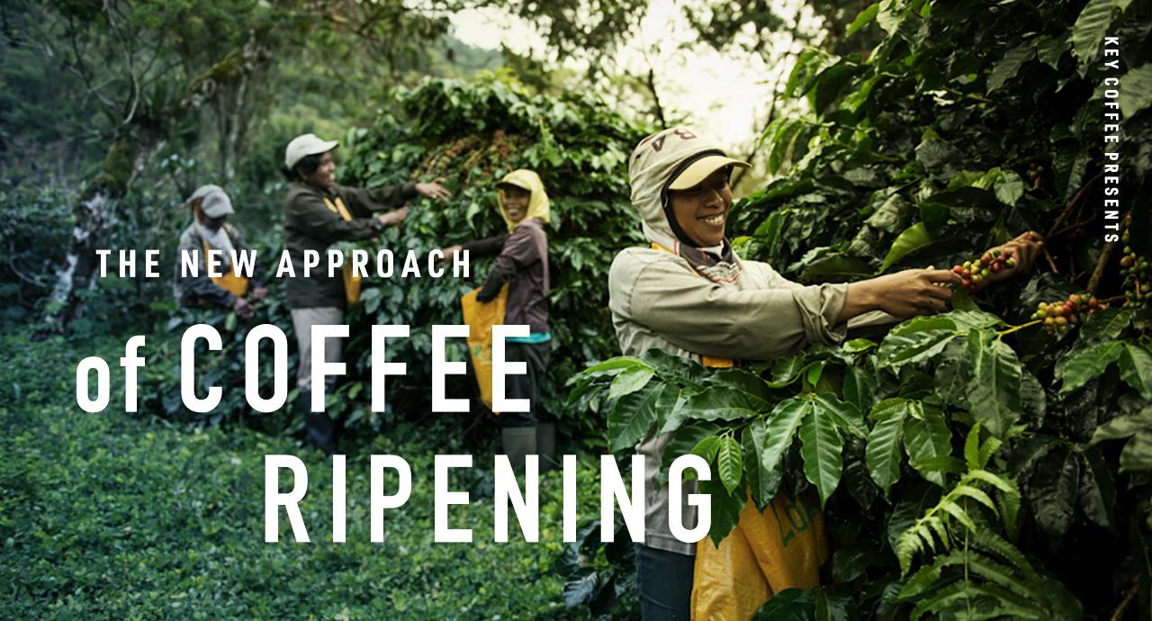 コーヒーチェリー熟成の画期的なアプローチを体験